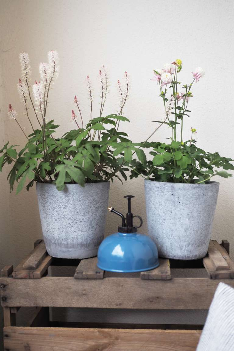 19 Living Balkon Deko Fruhling Blumen Ediths Iblaursen Paulsvera