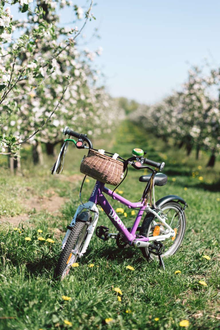 Diy Fahrrad Tassel Troddel Bastelideen Fur Kinder Paulsvera 2