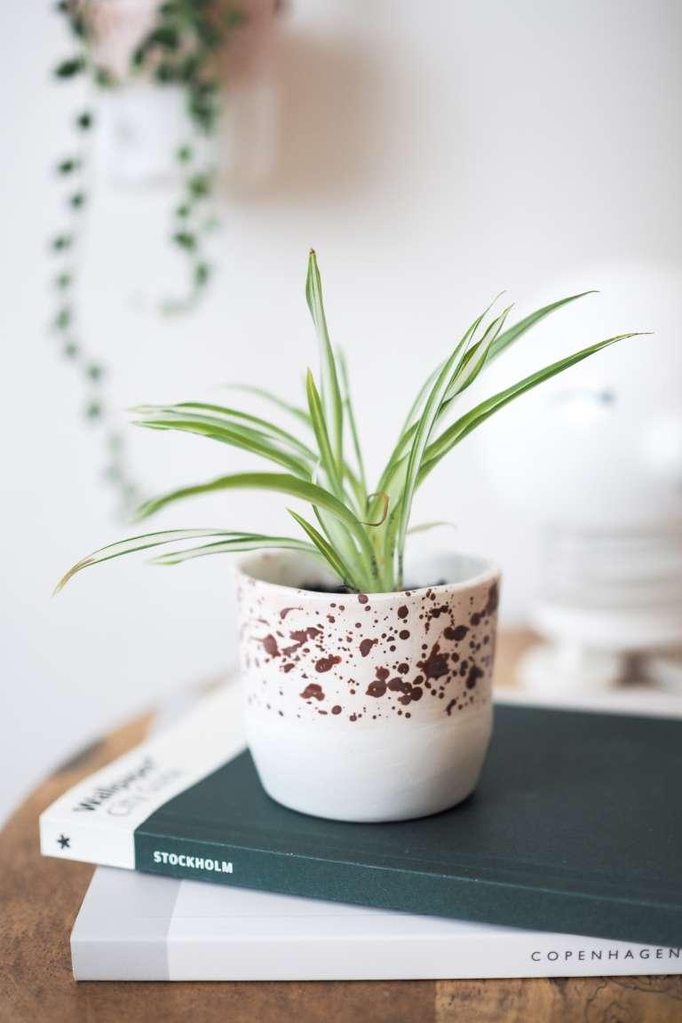 Fimo-Idee-Blumentopf-selber-machen-DIY-Deko-Basteln-Geschenke-selber-machen-DIY-Zuhause-paulsvera