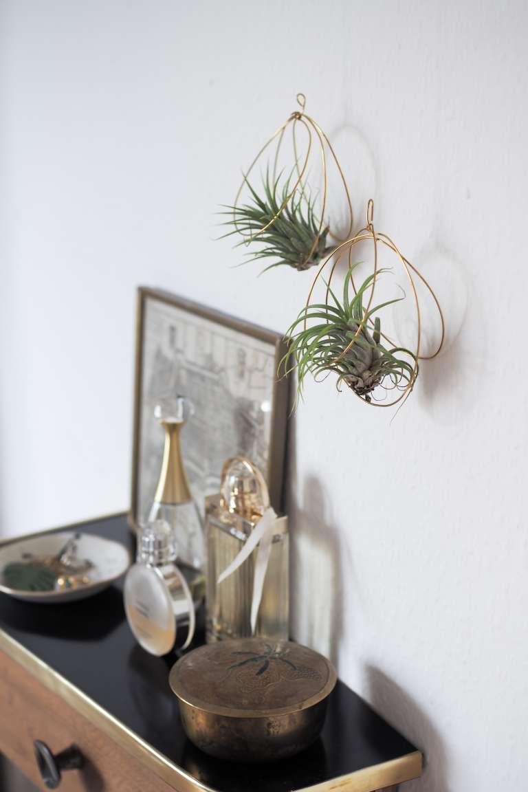 DIY: Luftpflanzen Halter aus Draht | paulsvera