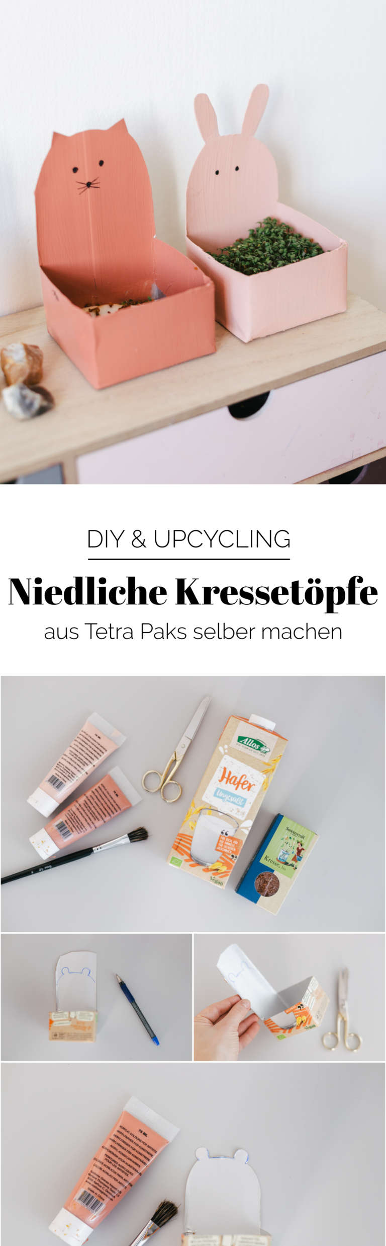 DIY Anleitung Upcycling Kressetopfe Tetra Pak Upcycling Idee fuer Kinder