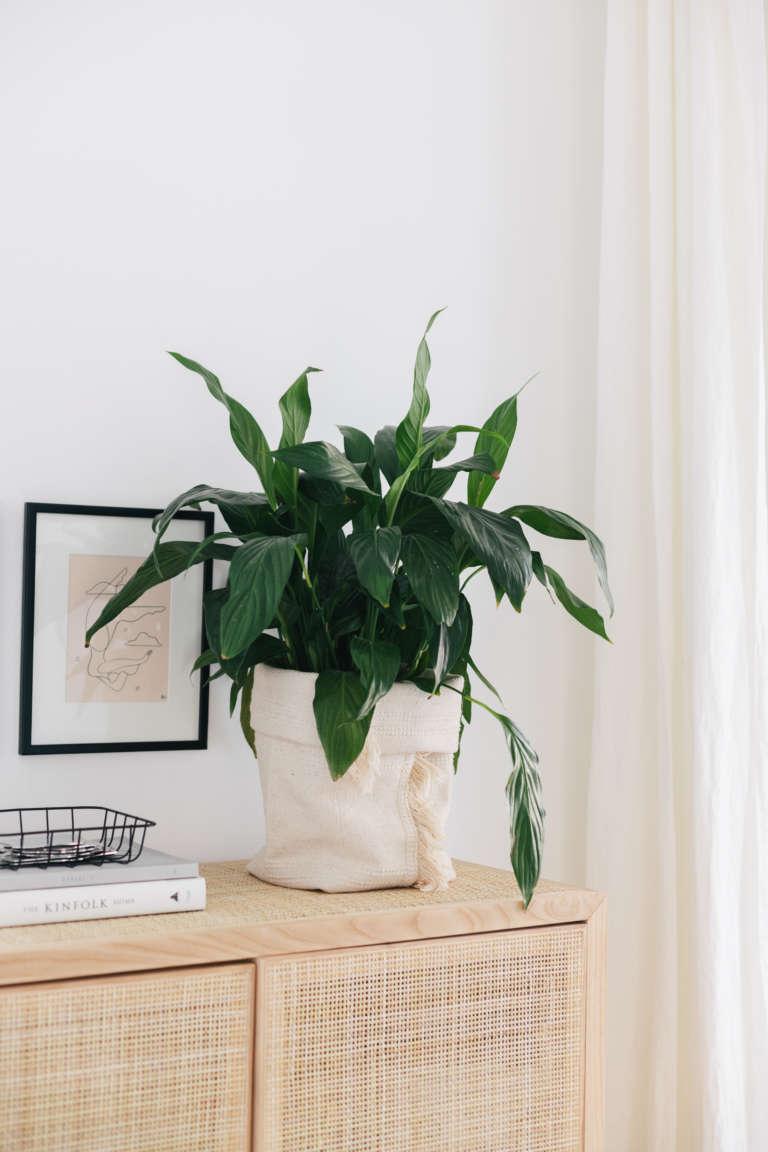 DIY IKEA Hack Blumentopf aus Teppich Sortso Boho DIY Deko Idee paulsvera 1