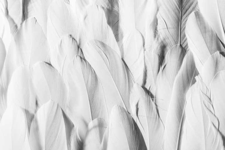 7 DIY Ideen Für Deine Hochzeit Schnelle Und Einfache Ideen Für Deine Party  Deko Zum Selbermachen