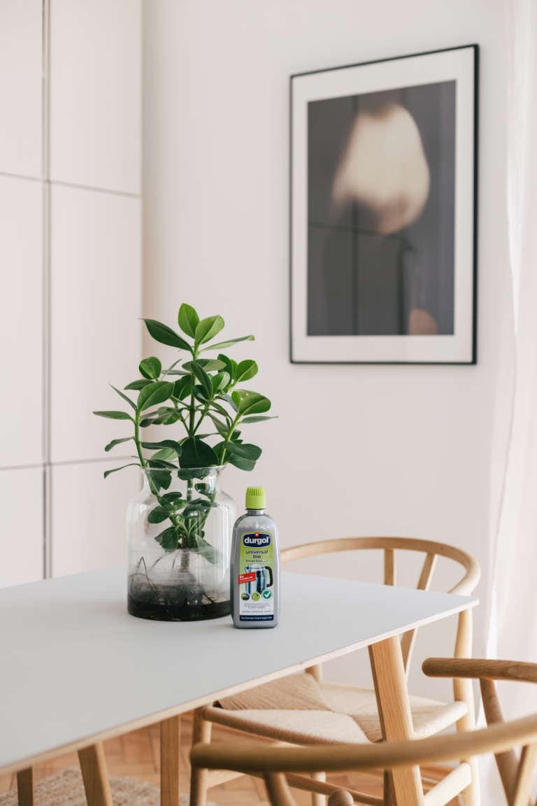 Waterplants reinigen pflegen selber machen durgol universal bio paulsvera 14
