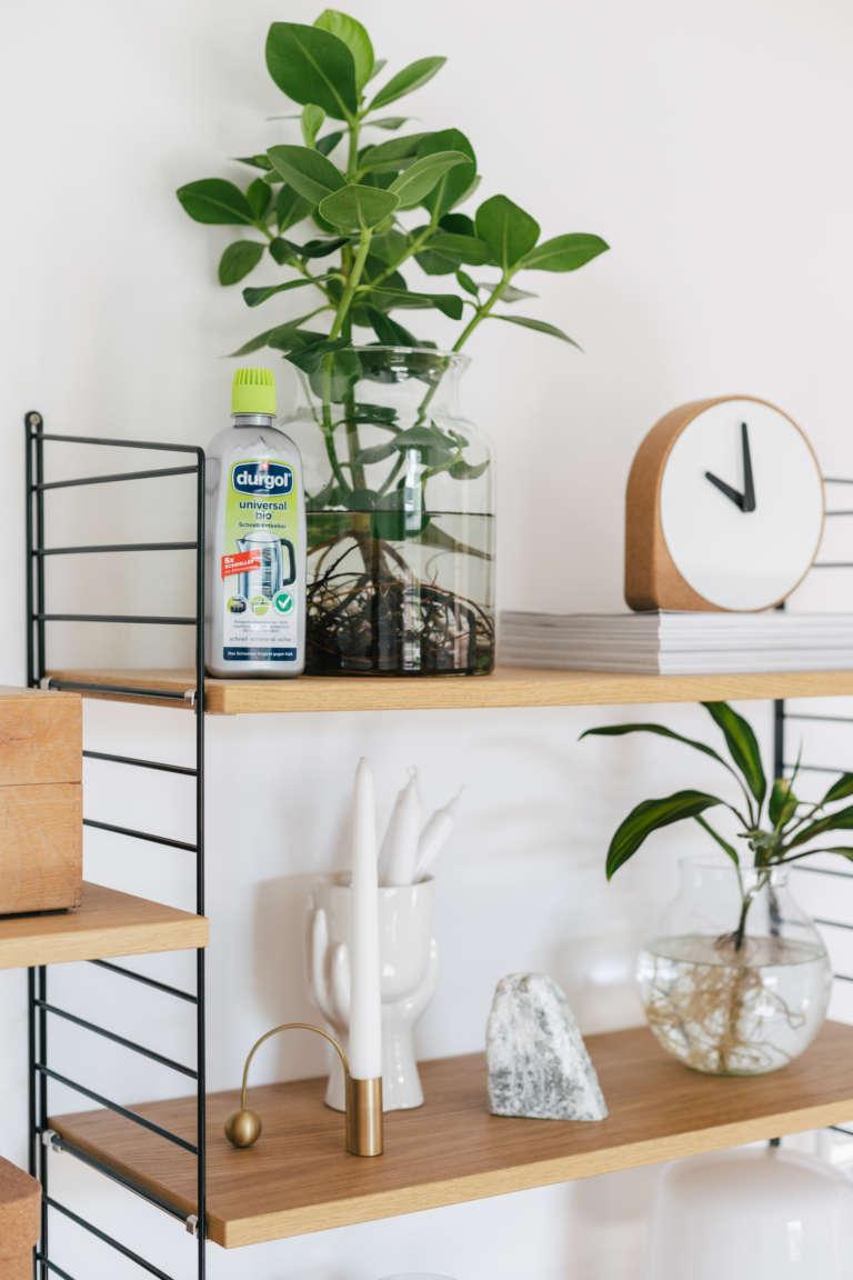 Waterplants reinigen pflegen selber machen durgol universal bio paulsvera 32